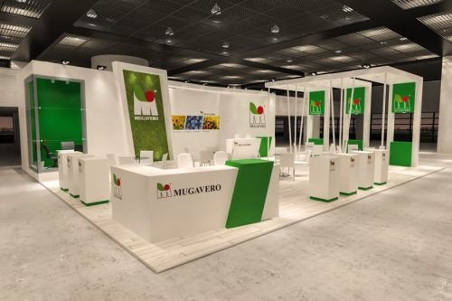 Growtech Custom Design Stand 004